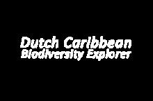 Dutch Caribbean Biodiversity Explorer