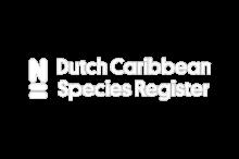 Dutch Caribbean Species Register